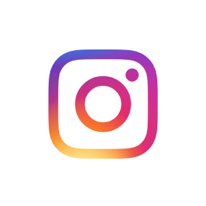 API Instagram Scraper Data Collector ScrapingBot
