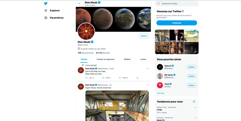 Screenshot of Elon Musk's profile page